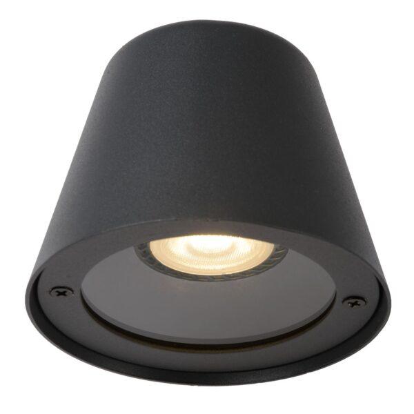Lampa ścienna DINGO - 14881/05/30