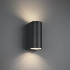 Lampa ścienna ROYA - 204260242