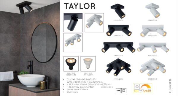 Lampa sufitowa TAYLOR - 09930/20/30